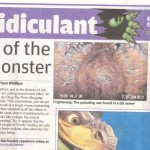 Deep Sea News in London's Metro