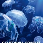 Reminder: California Coastal Cleanup Day