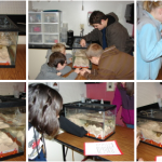 Students Experience Seafloor Spreading Thanks to Ocean Bloggers