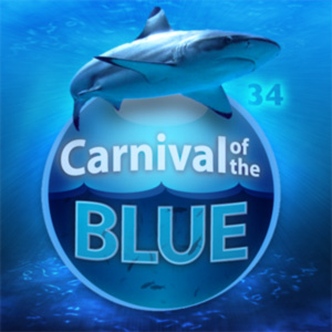 Carnival of the Blue is hosted at Southern Fried Science.