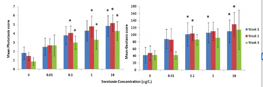 Mean averagephototaxisandgeotaxisscoreof E. marinus exposed tovariedconcentrationsofserotonin(n = 20pertreatment)overa3-weekperiod.Errorbarsto one standarddeviation.*SignificancecomparedwithcontroldeterminedbyMann–WhitneyandBonferronicorrection p < 0.0125.