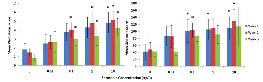 Figure 2 from paper: Mean average phototaxis and geotaxis score of E. marinus exposed to varied concentrations of serotonin (n = 20 per treatment) over a 3-week period. Error bars to one standard deviation. *Significance compared with control determined by Mann–Whitney and Bonferroni correction p < 0.0125.
