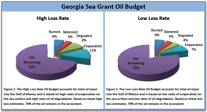 Fate of Oil in the Gulf (Sea Grant Georgia)