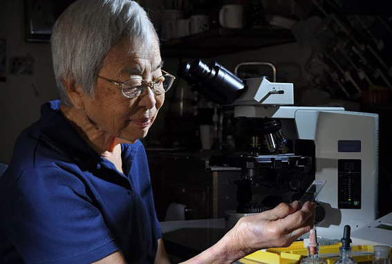 Dr Isabella Abbott, world-renowned algae taxonomist and University of Hawaiʻi at Mānoa ethnobotany professor emerita.