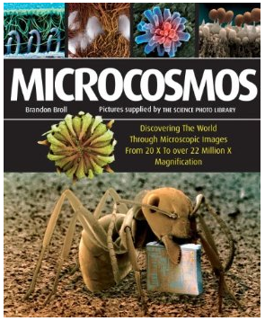 Microcosmos by Brandon Stoll. Click to purchases at amazon.com