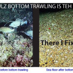 From the Editor's Desk: Benefits of Bottom Trawling and Other Assorted Fairy Tales