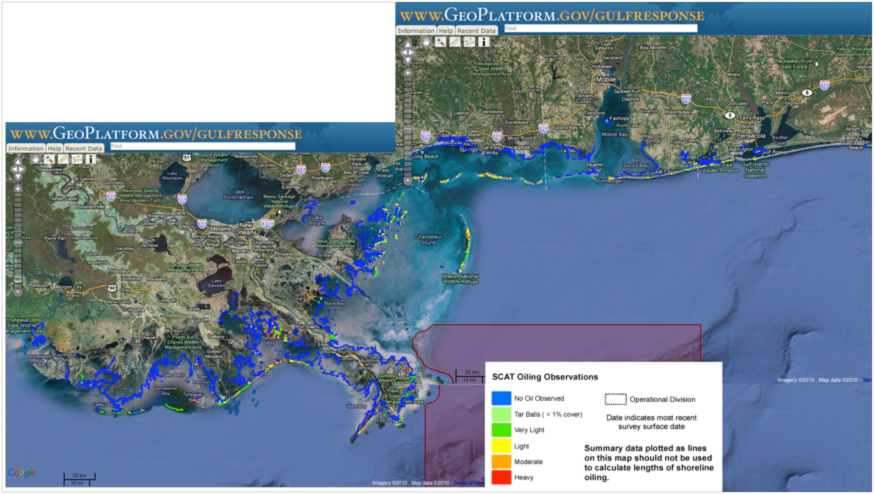 (From ROFF's) Latest (November 28-29, 2010) shoreline oiling observations derived from the NOAA GeoPlatform website (www.geoplatform.gov). The non-blue colored areas are the locations where oil has been observed. The red hashed area east of the Mississippi delta is the area closed to shrimp fishing due to the recent capture of oil in shrimp nets. Note that the oil on land extends over a wide geographic range from Florida to Louisiana.