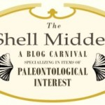 Welcome to the SHELL MIDDEN!!