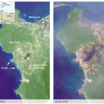 From the Editor's Desk: The Environmental Impacts of Tsunamis