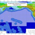 16.1 Million Square Miles of Deep Seafloor Protected in North Pacific