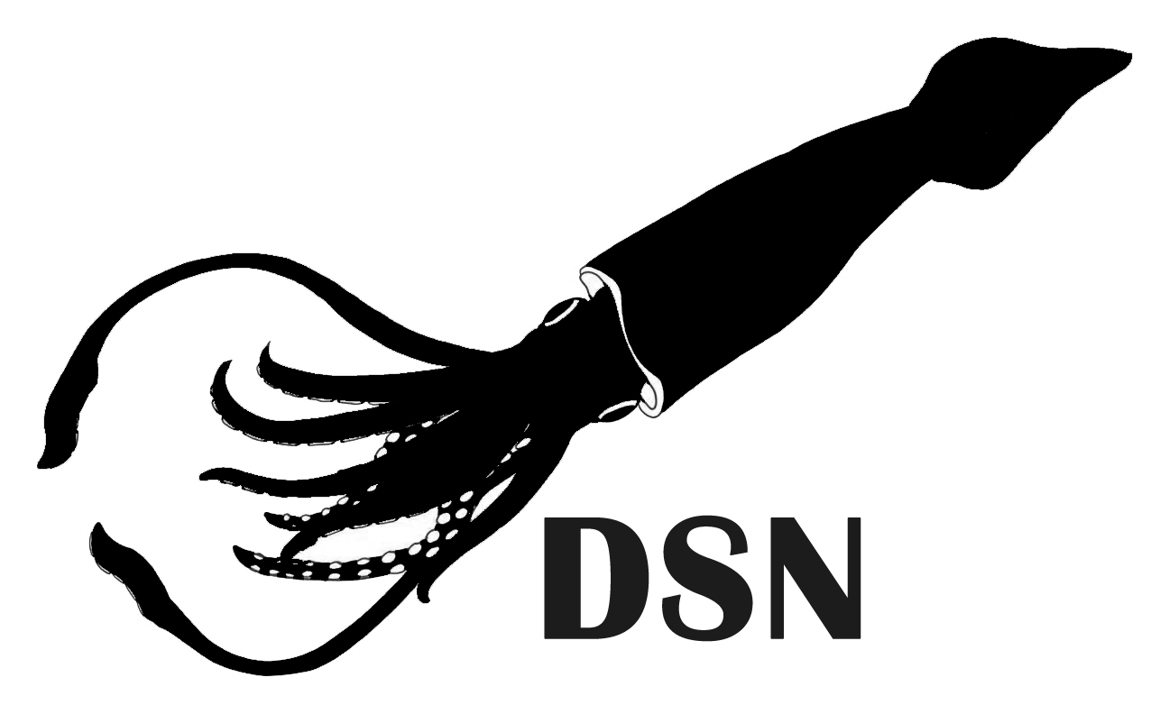 squid(DSN)