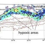 2011 Gulf of Mexico 'dead zone' could be biggest ever