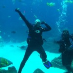 Dr. M and Miriam swim with manta rays & whale sharks in world's biggest tank