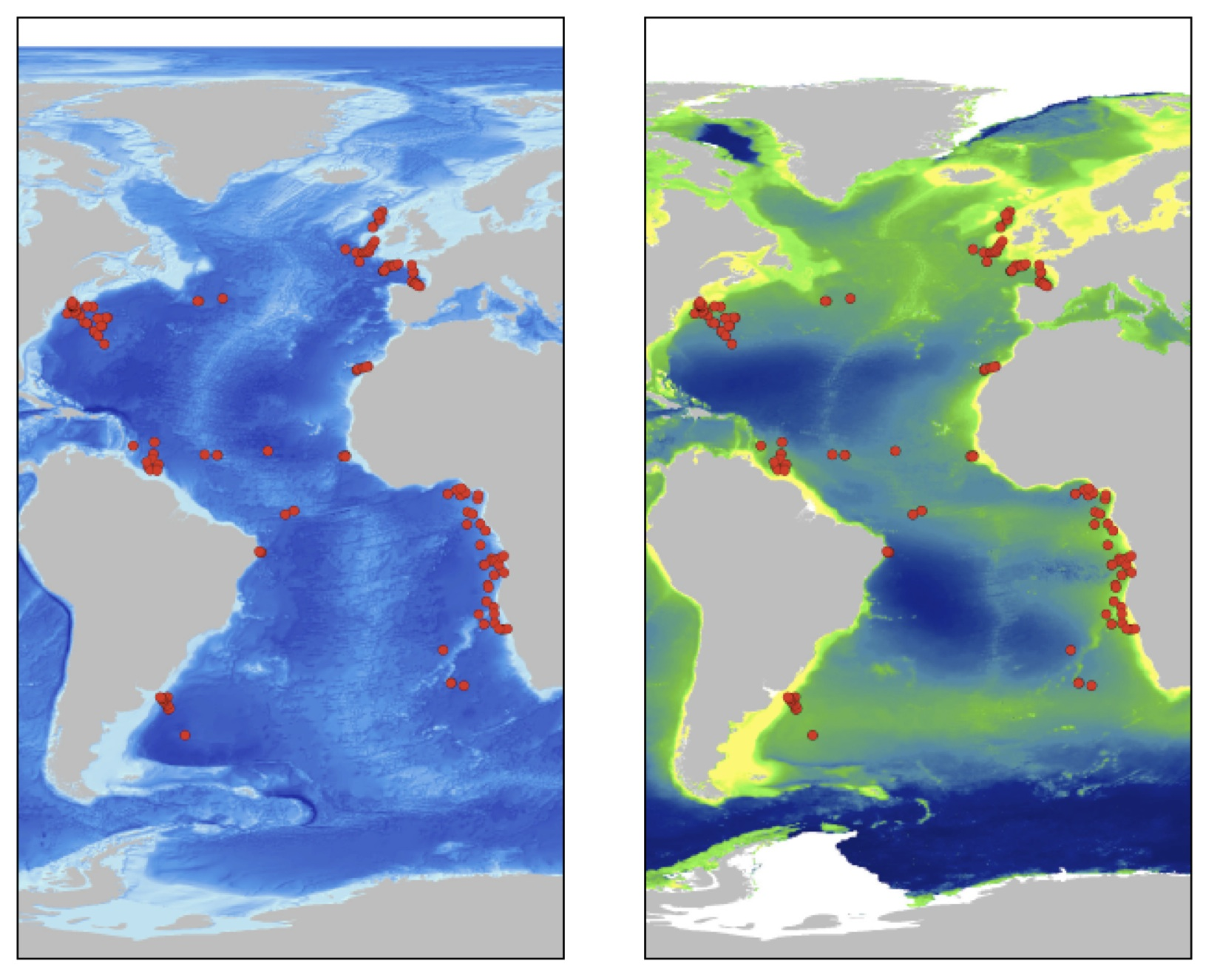 Map of ocean depths (left) and marine snow (right) with samples (red dots) from across the Atlantic Ocean.  Higher accumulations of marine snow are denoted by yellow.