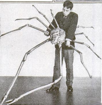 Popular Science Magazine, jun. 1920: http://books.google.com/books?id=xCkDAAAAMBAJ&lpg=PP1&hl=ru&pg=PA42#v=onepage&q=&f=false  Japanese_spider_crab