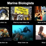 The glamorous life of the marine biologist