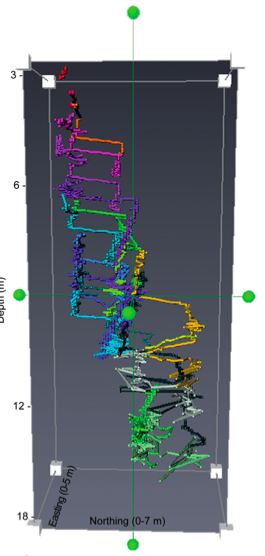 Three dimensional trajectories (different colors) of 20 individual Humboldt Squid
