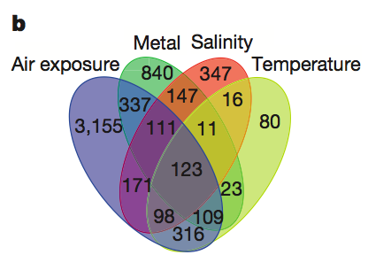 Venn diagram of common and unique genes expressed in response to temperature, salinity, air exposure and heavy-metal stress (zinc, cadmium, copper, lead and mercury), showing overlap of responses.