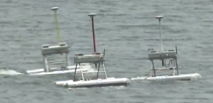 The Jellyfish Elimination Robotic Swarm,