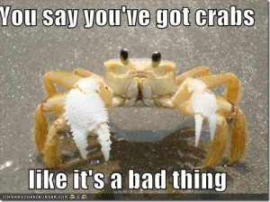 got-crabs_thumb