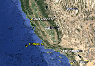 Station M is a long-term study site on the abyssal plain, about 220 kilometers (140 miles) off the Central California coast and 4,000 meters (13,100) feet below the ocean surface. Base image: Google Earth. From MBARI
