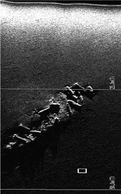 Side scan sonar Image of the HMS Sussex. Image from Oddyssey Marine