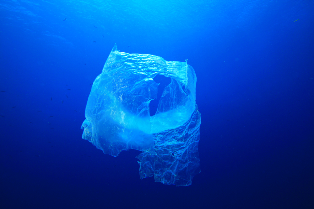 a study of plastic pollution in the pacific ocean A comparison of plastic and plankton in the north pacific  of neuston plastic in the north pacific ocean,  a case study marine pollution.