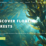 Floating Forests