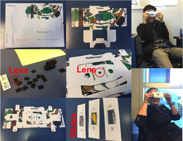 All the various stages (pun intended) of Foldscope production. And my lovely office mate Brian and I modeling them.