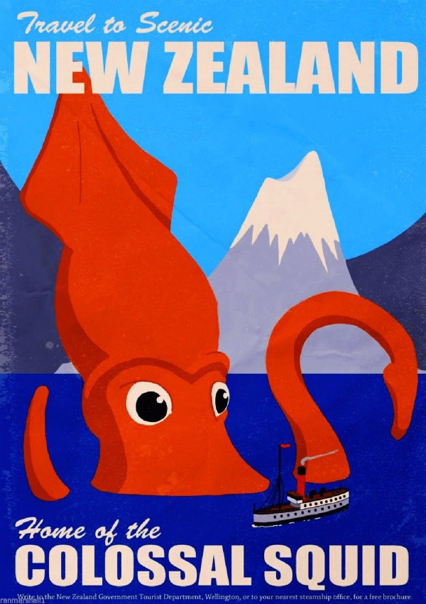 Colossal Squid NZ