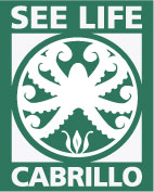 see-life-logo-with-type