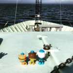 When real-life marine biologist and mom goes to sea, she takes the octonauts with her