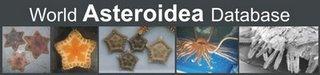 The Future of Invertebrate Domination