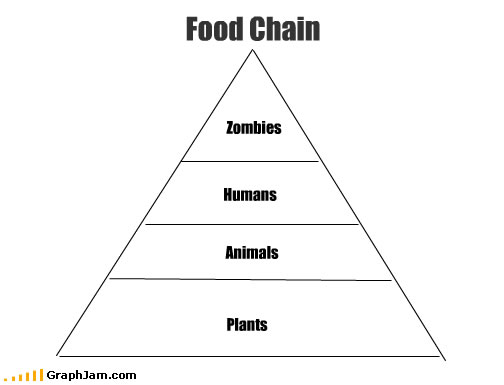 song-chart-memes-food-chain