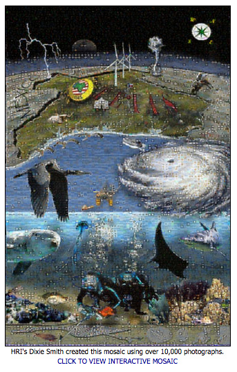 Interactive mosaic image by Dixie Smith, Harte Research Institute.