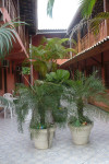 Posado Parque Imperial, our home away from home.