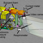 Benthic Rover, Benthic Rover