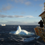 Dispatches from Antarctica – Icebergs and Whales