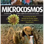 Microcosmos: a Celebration of the Very Teensy