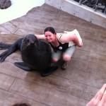 Name a baby fur seal at New England Aquarium
