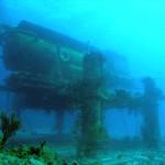 FIU to take over Aquarius ReefBase