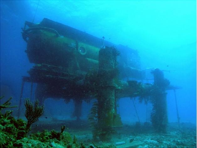 Reef Base. Sweet. Reef Base.