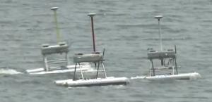 The Jellyfish Elimination Robotic Swarm,