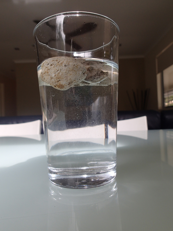 Floating pumice.  Photo by Craig McClain and not reproducible without permission.