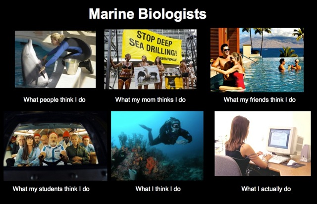 The glamorous life of the marine biologist. Source: Jarrett Byrnes