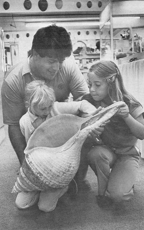 From Hawaiian Shell News 1982 No. 7