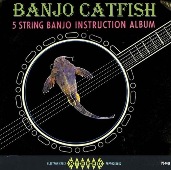 Banjo Catfish Album