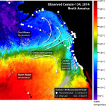 Fukushima radiation detected 100 miles from California Coast. Still not harmful.