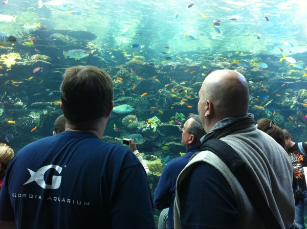 Rick and Al mesmerized by the glory of the Georgia Aquarium at our DSN retreat in 2011