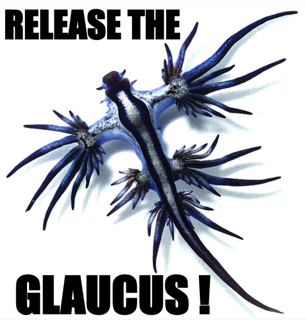 Release the Glaucus!
